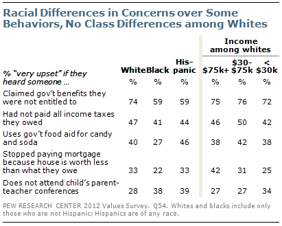 Racial differences in concerns over some behaviors, no class differences among whites