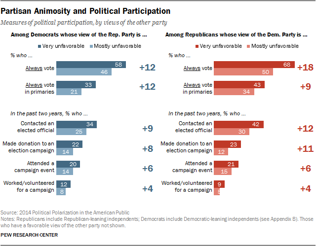 Partisan Animosity and Political Participation