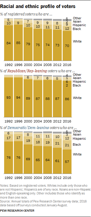 Racial and ethnic profile of voters