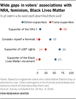 Wide gaps in voters' associations with NRA, feminism, Black Lives Matter