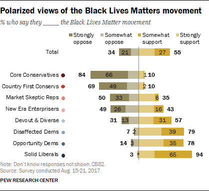Polarized views of the Black Lives Matter movement